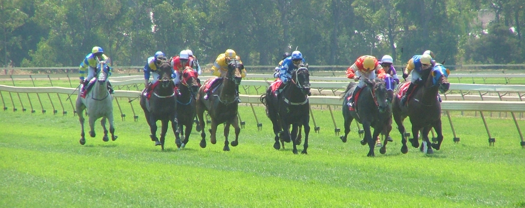 Twitter's live stream of the Melbourne Cup could change how we 'broadcast' sport