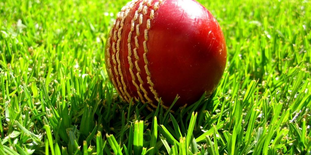 cricket-1513138-1280x960