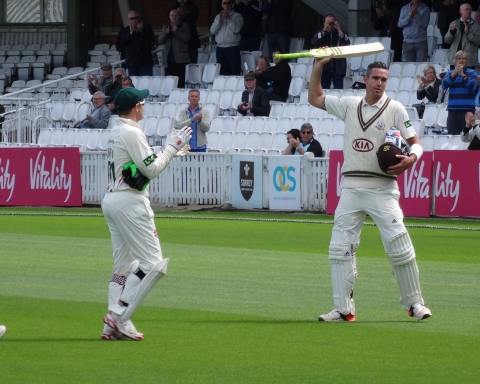 cricket-2629178_1920
