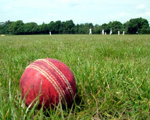 cricket-1164891-1279x960